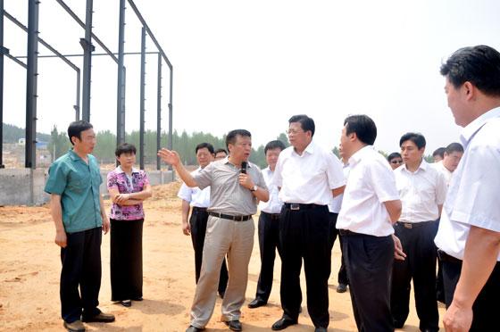 济南市副市长苏树伟调研集团树山锦泉公司生物质成型燃料专用锅炉项目